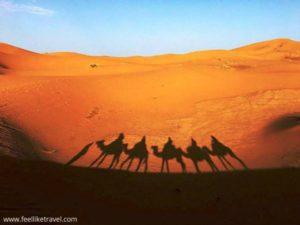 Escritura terapeutica en el desierto Eva Lleonart